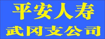 平安人寿武冈支公司-衡阳招聘